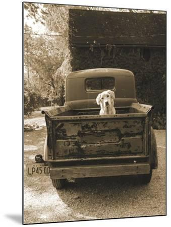 Get Out of Dodge-Jim Dratfield-Mounted Art Print