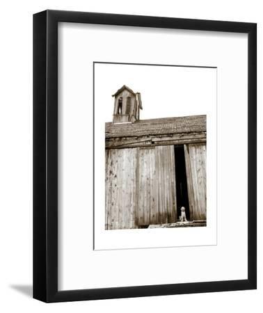 Barnyard Dog-Jim Dratfield-Framed Art Print