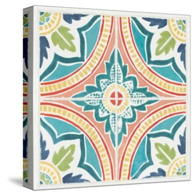 Colorful Journey VIII-Pela Studio-Stretched Canvas Print