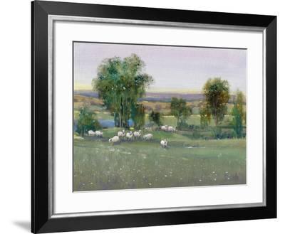Field of Sheep II-Tim O'toole-Framed Art Print