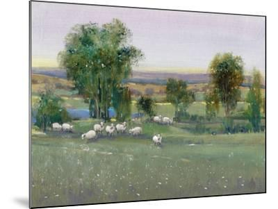 Field of Sheep II-Tim O'toole-Mounted Art Print