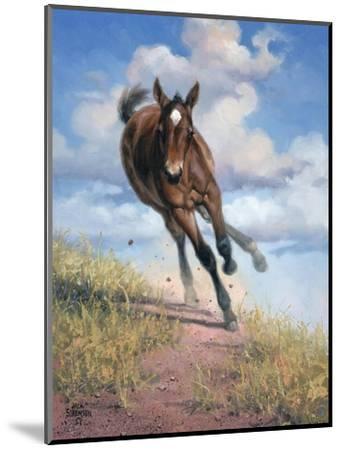 Wild Oats-Jack Sorenson-Mounted Art Print