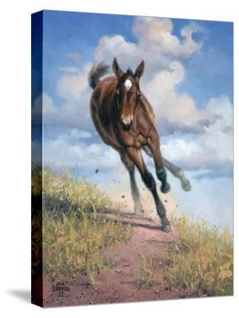 Wild Oats-Jack Sorenson-Stretched Canvas Print