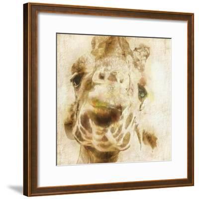 Inspektor IV-Ryan Hartson-Weddle-Framed Art Print