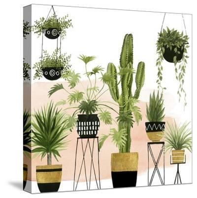 Indoor Oasis I-Grace Popp-Stretched Canvas Print
