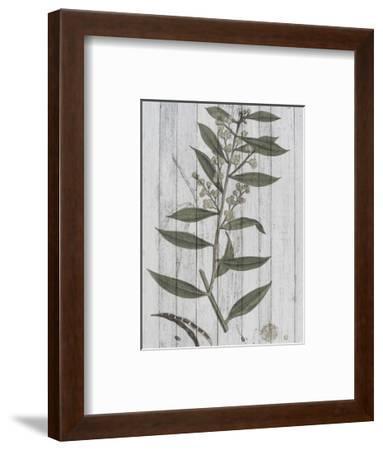 Rustic Greenery III-Jennifer Goldberger-Framed Art Print