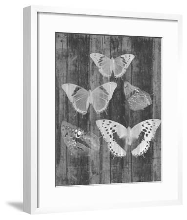Rustic Butterfly Chart II-Jennifer Goldberger-Framed Art Print