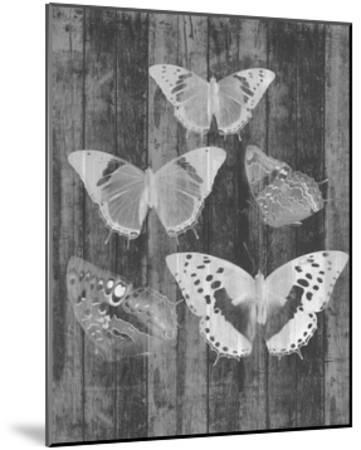 Rustic Butterfly Chart II-Jennifer Goldberger-Mounted Art Print