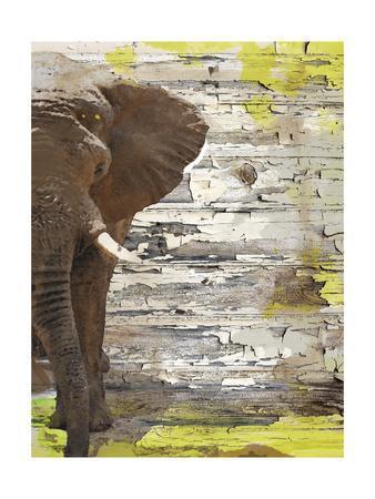 The Elephant I-Irena Orlov-Framed Art Print