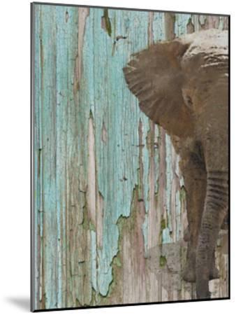 The Elephant II-Irena Orlov-Mounted Art Print