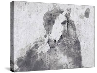Dapple Horse II-Irena Orlov-Stretched Canvas Print