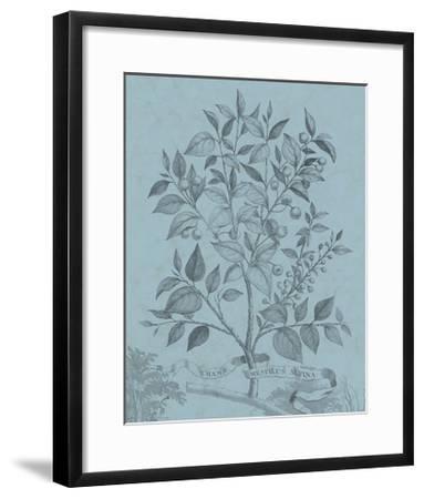 Botanical on Teal V-Vision Studio-Framed Art Print