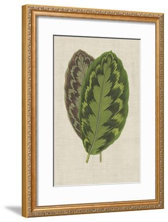 Leaves on Linen IV-Unknown-Framed Premium Giclee Print