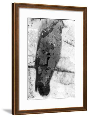B&W Flight IX-Ingrid Blixt-Framed Premium Giclee Print