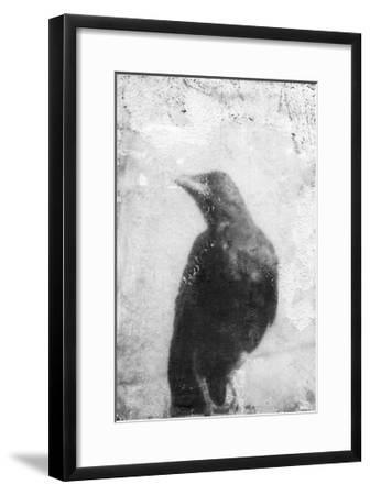 B&W Flight III-Ingrid Blixt-Framed Premium Giclee Print