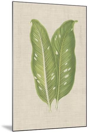 Leaves on Linen V-Unknown-Mounted Premium Giclee Print