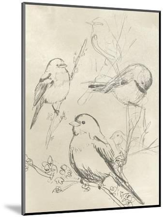 Vintage Songbird Sketch II-June Erica Vess-Mounted Art Print