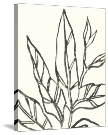 Tropical Contour II-June Erica Vess-Stretched Canvas Print