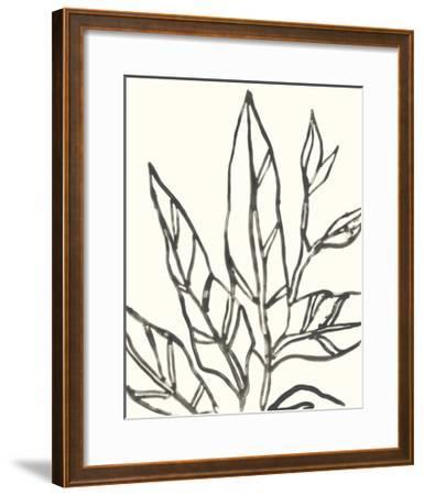 Tropical Contour II-June Erica Vess-Framed Art Print