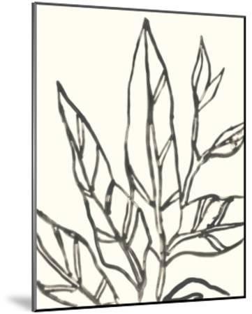 Tropical Contour II-June Erica Vess-Mounted Art Print