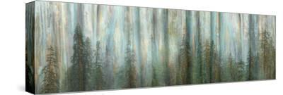 USA, Alaska, Misty Fiords National Monument. Panoramic collage of paint-splattered curtain.-Jaynes Gallery-Stretched Canvas Print