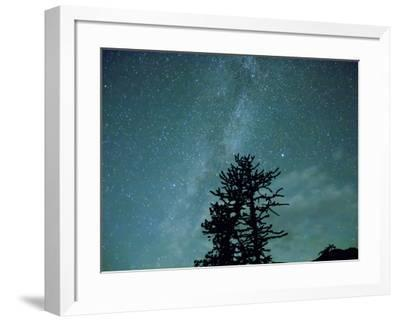 Washington State, Alpine Lakes Wilderness, Ingalls Pass, Milky Way and trees-Jamie & Judy Wild-Framed Photographic Print
