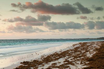 Elevated view of Pink Sands Beach, Dunmore Town, Harbour Island, Eleuthera Island, Bahamas--Framed Photographic Print
