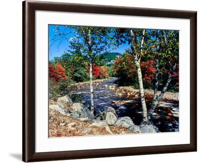 River flowing through a forest, Swift River, Kancamagus Highway, White Mountain National Forest...--Framed Photographic Print