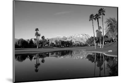 Pond in a golf course, Desert Princess Country Club, Palm Springs, Riverside County, California...--Mounted Photographic Print