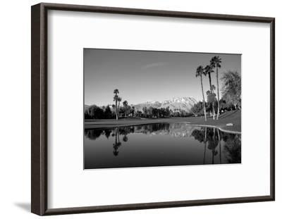 Pond in a golf course, Desert Princess Country Club, Palm Springs, Riverside County, California...--Framed Photographic Print