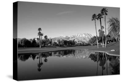 Pond in a golf course, Desert Princess Country Club, Palm Springs, Riverside County, California...--Stretched Canvas Print