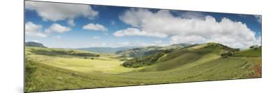Rolling hills of the Wolkberg Conservancy, Tzaneen, Limpopo Province, South Africa--Mounted Photographic Print