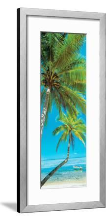Palm trees on the beach, Viti Levu, Palm Cove, Fiji--Framed Photographic Print