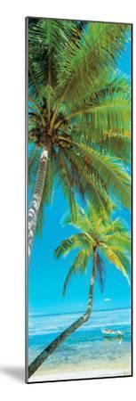 Palm trees on the beach, Viti Levu, Palm Cove, Fiji--Mounted Photographic Print