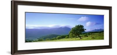 Valley of Lorton, English Lake District, Cumbria, England--Framed Photographic Print