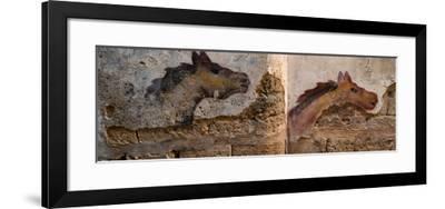 Mural of animal on wall, Acre (Akko), Israel--Framed Photographic Print