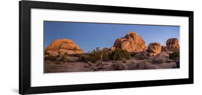 Rock formations on landscape with Juniper and Joshua Trees, Joshua Tree National Park, Californi...--Framed Photographic Print