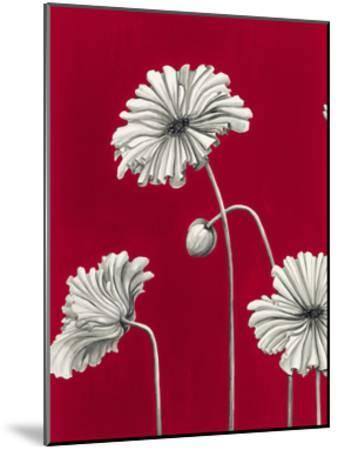 In Bloom C - Recolor-Jo Mathers-Mounted Premium Giclee Print