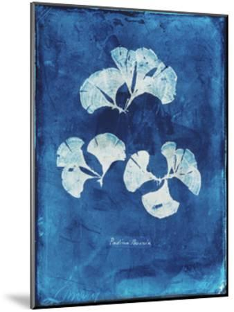 Natural Forms Blue 4-THE Studio-Mounted Premium Giclee Print