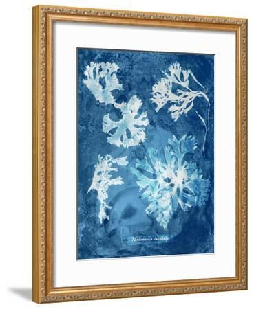 Natural Forms Blue 1-THE Studio-Framed Premium Giclee Print