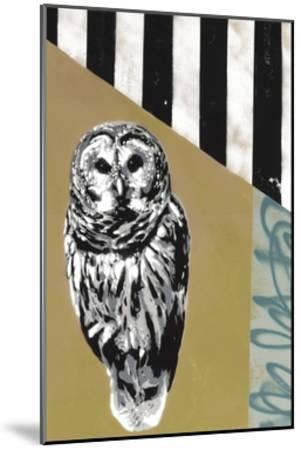 Barred Owl - Recolor-Urban Soule-Mounted Premium Giclee Print