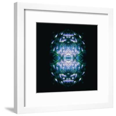 Fireworks Rose 13-David Jordan Williams-Framed Premium Giclee Print
