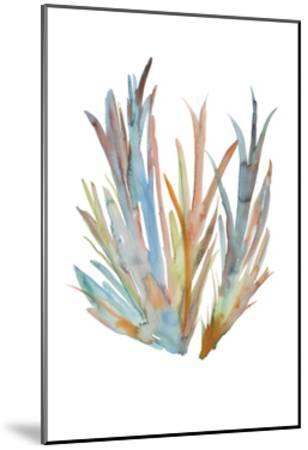 Rainbow Wish 3-Erin Lin-Mounted Premium Giclee Print