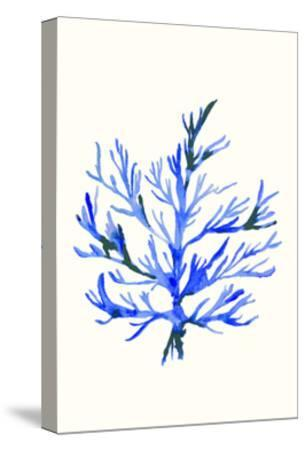 Ultramarine Growing 2-Erin Lin-Stretched Canvas Print