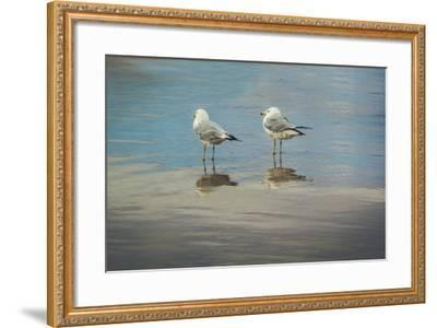 Silent They Wait-Eunika Rogers-Framed Art Print