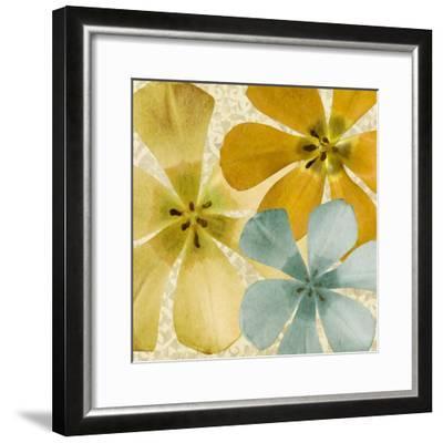 Springtime Glow II-Alonzo Saunders-Framed Photographic Print