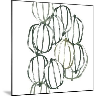 Seed Vessels I-June Erica Vess-Mounted Premium Giclee Print