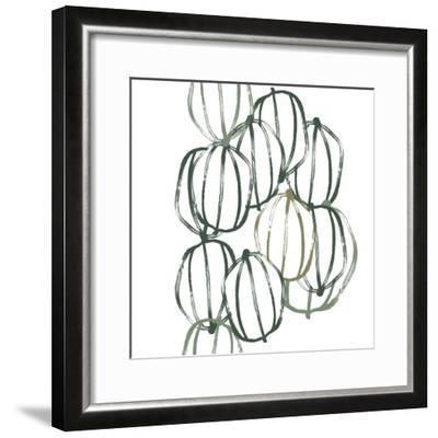 Seed Vessels I-June Erica Vess-Framed Premium Giclee Print