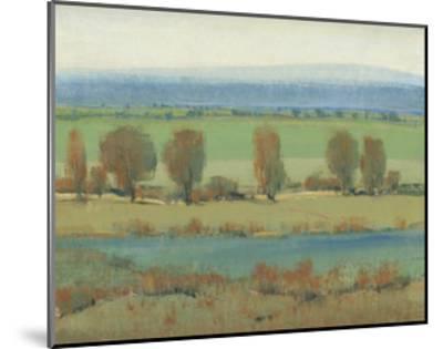 Flat Terrain I-Tim O'toole-Mounted Premium Giclee Print