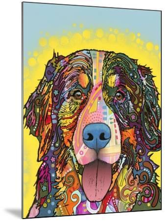 Bernese Mountain Dog-Dean Russo-Mounted Giclee Print